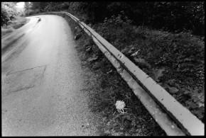 Sniper's Road
